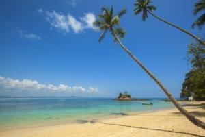 ocean-more-plaz-dovolena-ilustr