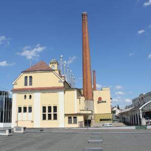 Plzeňský Prazdroj zabodoval v soutěži Pivní speciál roku se třemi pivy
