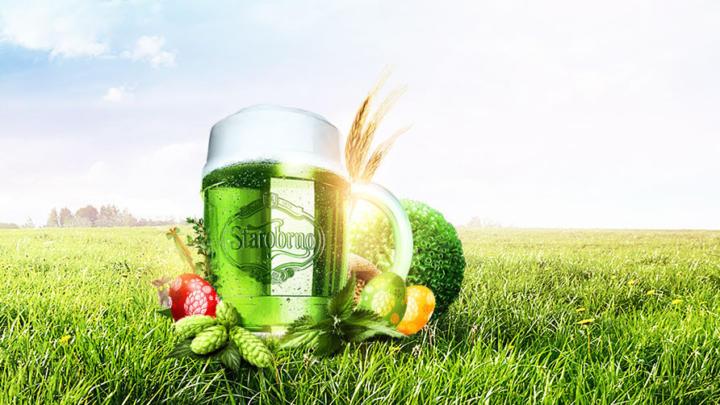Starobrněnští sládci uvařili Zelené pivo. Čepovat se začne na velikonoční Zelený čtvrtek