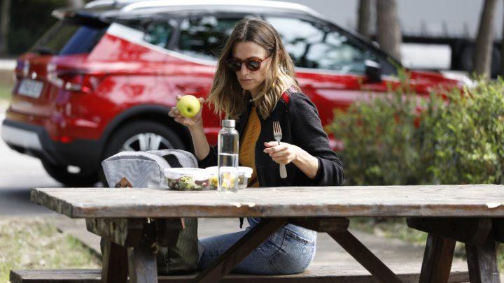 Jaké potraviny jsou vhodné pro cestování autem?