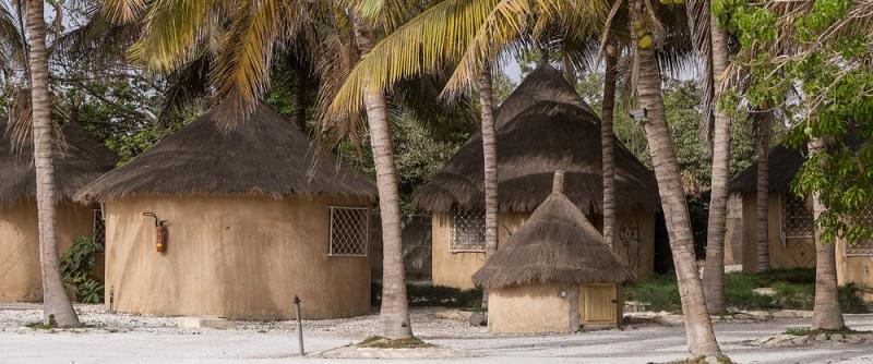 Letos exotika letí: V Keni nebo Senegalu už jste byli?